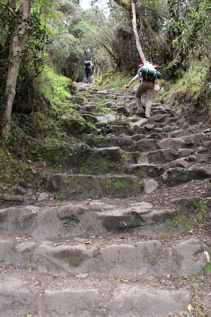 06 trail