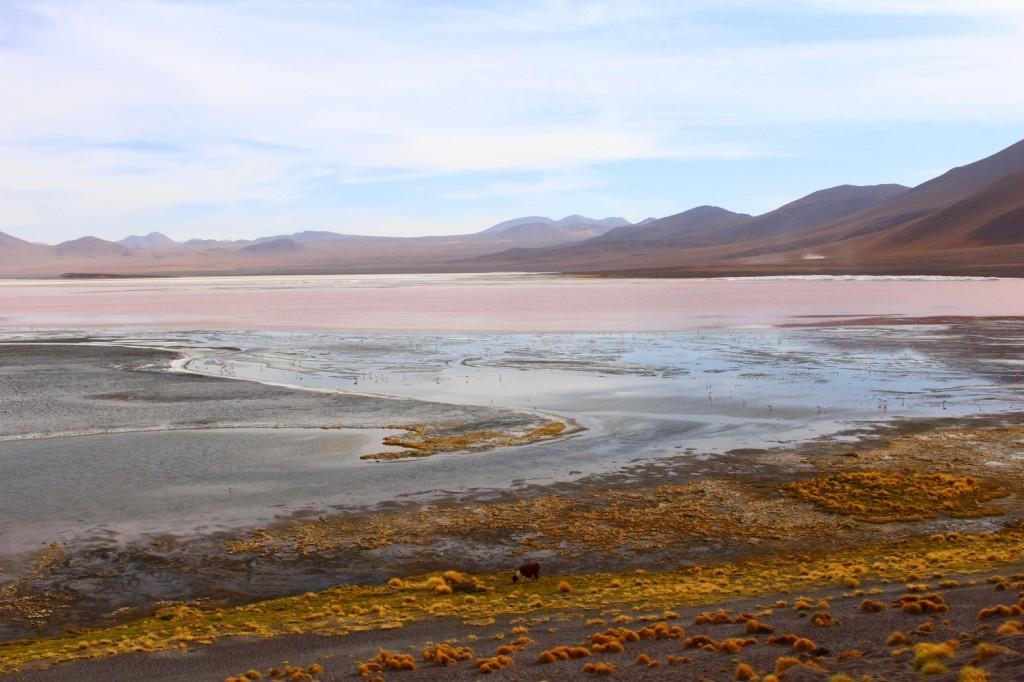 14 laguna colorada