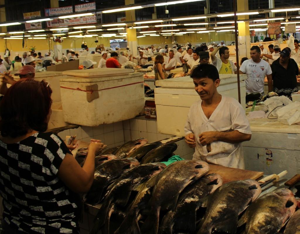 23 vismarkt